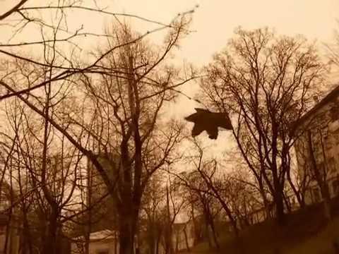 ПилОт - Дорога в рай (любительский клип)